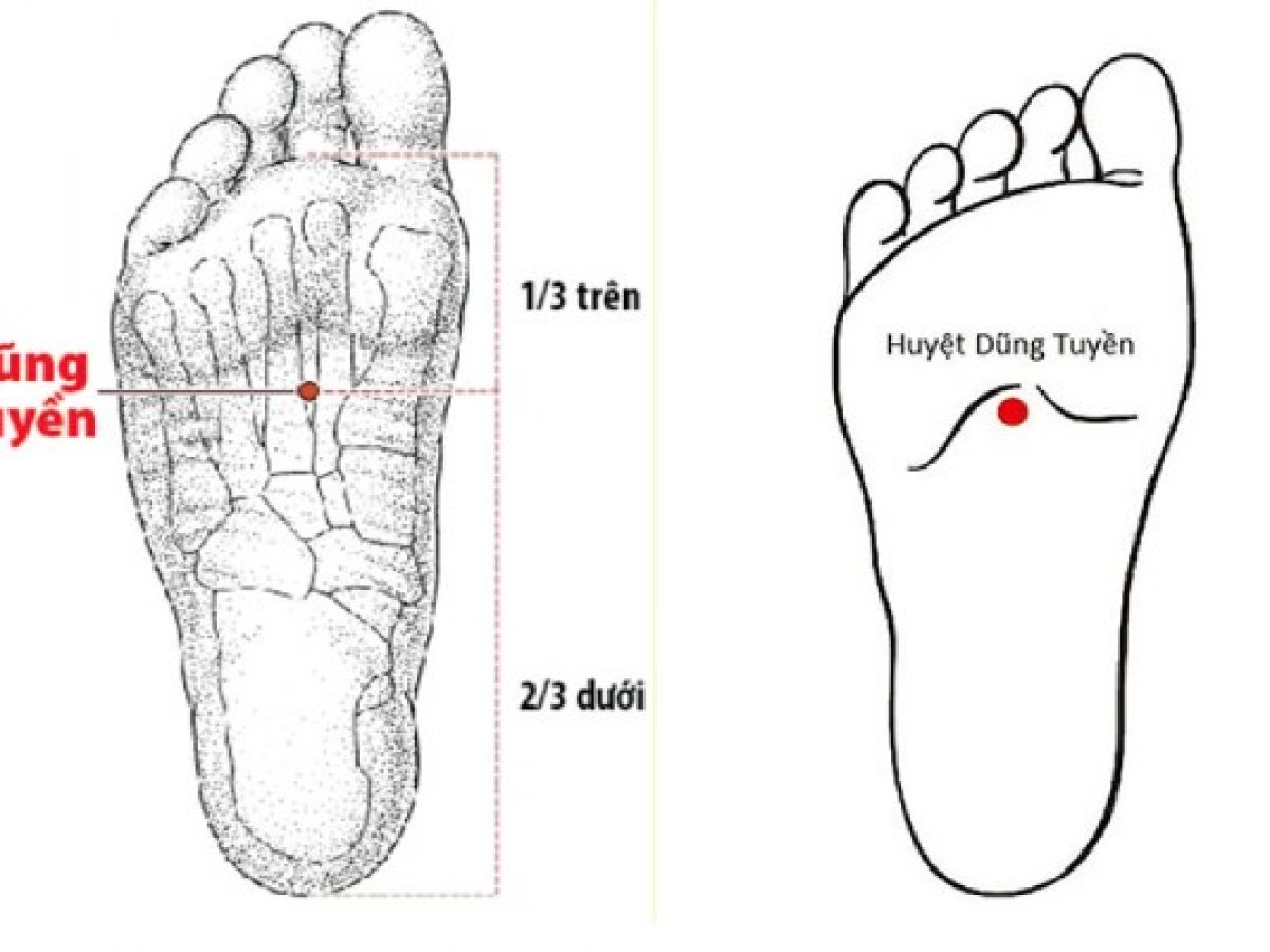 Huyệt nằm ở chỗ lòm dưới lòng bàn chân, kẻ 1 đường thẳng từ đỉnh ngón chân thứ 2 đến cuối gót chân, rồi chia thành 5 phần bằng nhau, huyệt nằm ở 2/5 trên và 3/5 dưới của bàn chân ngay chỗ lõm.