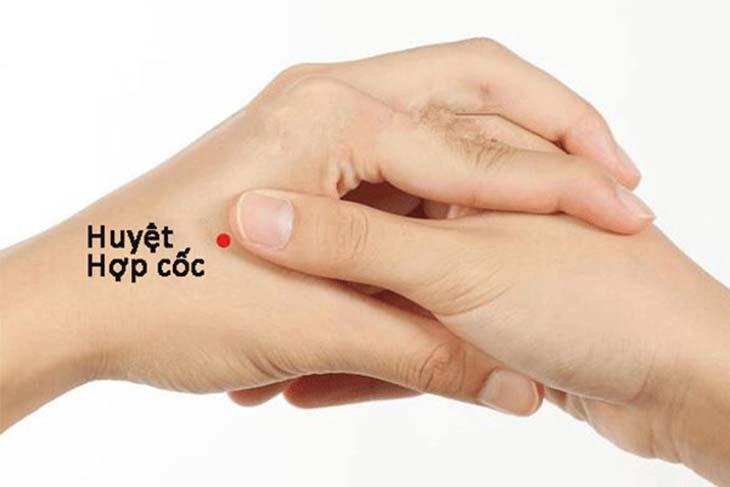 Huyệt nằm giữa xương đốt bàn tay 1 và 2 phía mu bàn tay